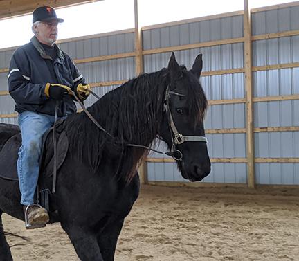 C Grace n My Love Affair with Horses