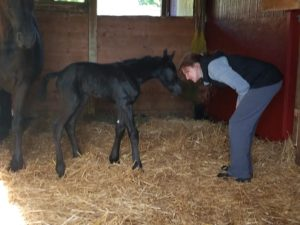 Huron FireStar with owner Brenda