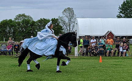 Friesian Horse Open House!